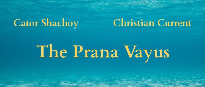 Prana Vayus